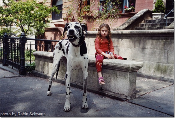 tinyvices_robin-schwartz