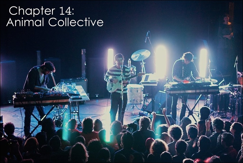 animal collective (1)